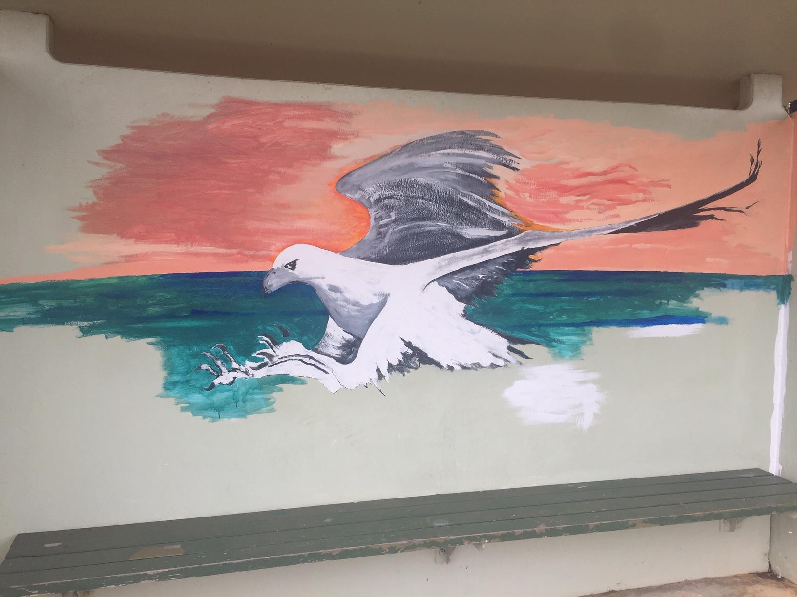 Sea Eagle 12 Oct 2019